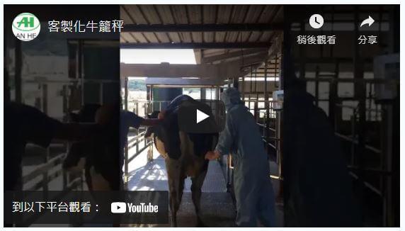 畜牧業電子秤-專用動物籠設計(客製化)